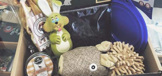 Die WAUWAU BOX: Das Glücklichmach-Produkt für Hund und Herrchen - StartupBrett