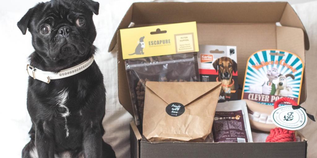 wauwau-box - 10 Weihnachtsgeschenkideen, die garantiert gut ankommen