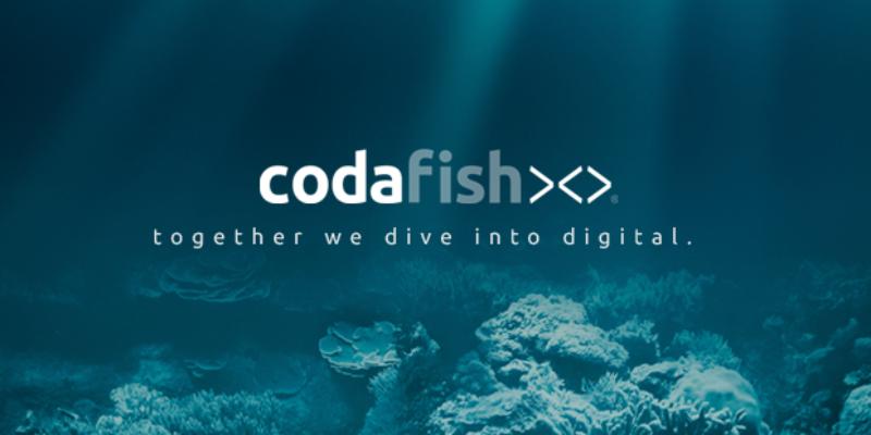 Codafish: Mit einer Full-Service-Agentur durchstarten