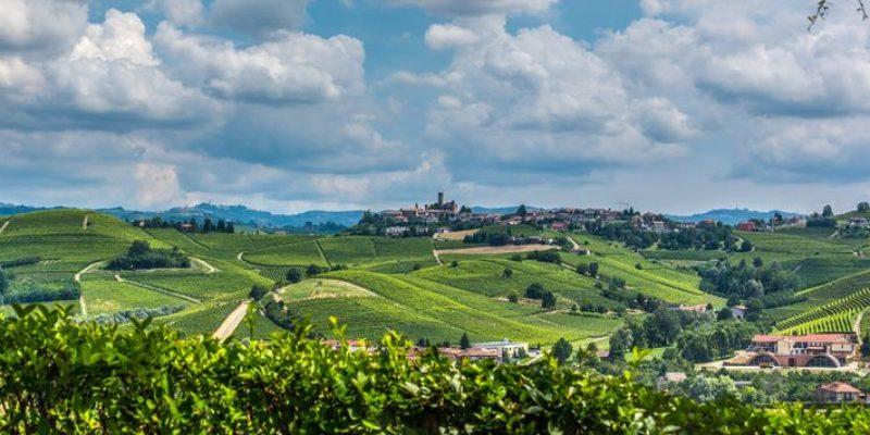 Weinober – Ihr Spezialist für Weine aus Südtirol